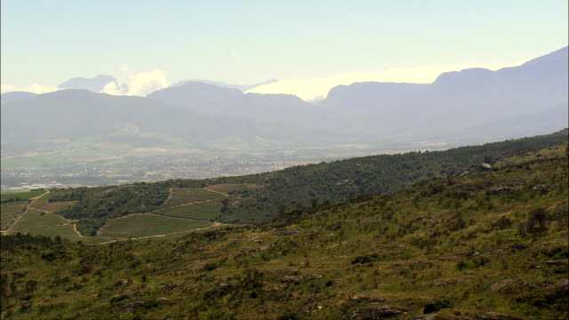 Vineyards To the West Of Paarl  - Aerial View - Western Cape,  Cape Winelands District Municipality,  Drakenstein,  South Africa