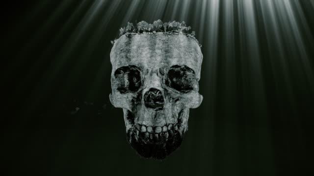 Vintage Island and Skull
