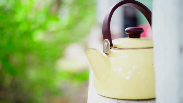 Vintage Style Teapot video