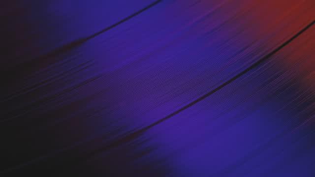 un disco in vinile gira nel lettore musicale grammofono e suona una vecchia discoteca. primo scatto del lettore di dischi in vinile retrò - disco audio analogico video stock e b–roll