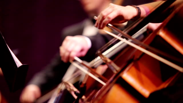 Violin at a concert