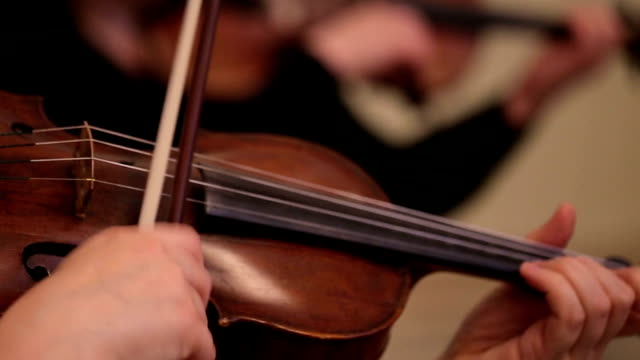 Violin Live Concert video