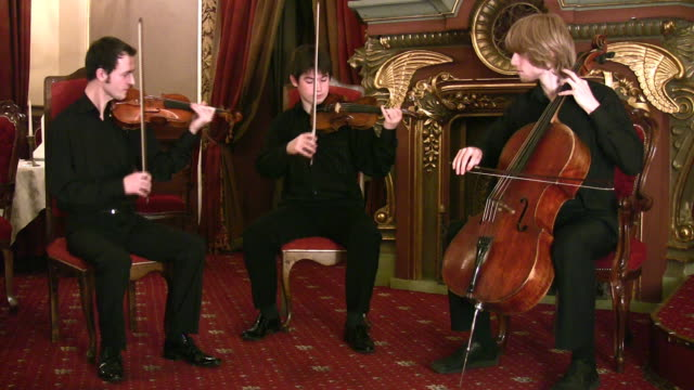 Violinists and violoncellist video