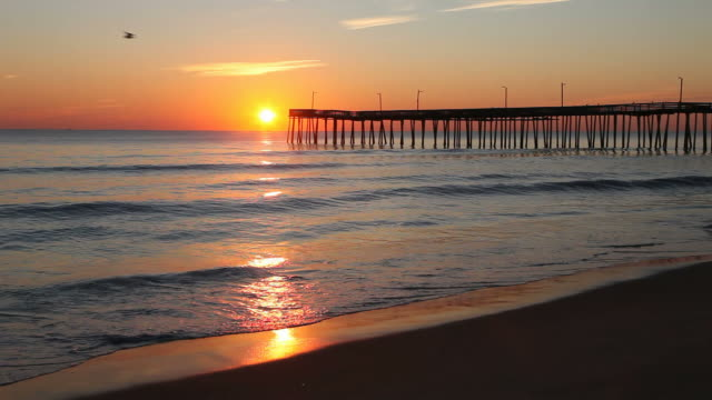 stockvideo's en b-roll-footage met virginia beach - pier