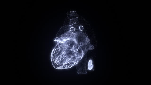 virtual image of human heart. modern methods of diagnostics of the heart - heart стоковые видео и кадры b-roll