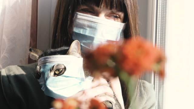 virus. a woman is sitting with a cat in a protective gauze mask from the virus. - felino video stock e b–roll