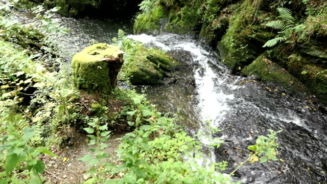 Visiting waterfall die Rausch at wild Endert stream next to Cochem, Mosel River video