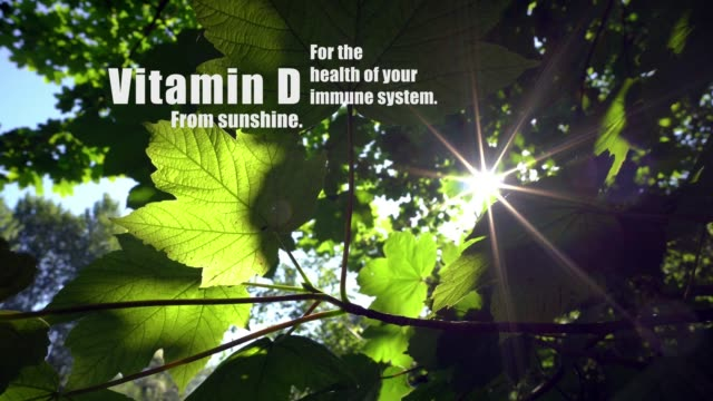 Vitmain D from sunshine, for the health of your immune system. - vídeo