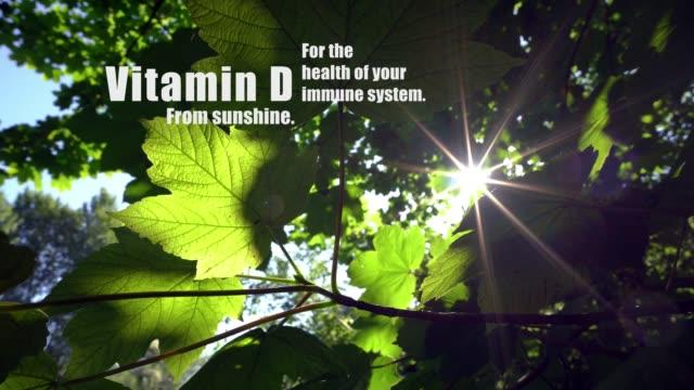 Vitmain D van zonneschijn, voor de gezondheid van uw immuunsysteem. video