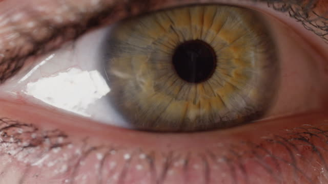 SLOW MOTION CLOSE UP: Vividly colored green eye frantically looking around room. video