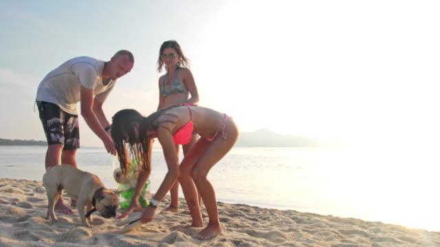 Volunteers cleaning the beach 4K video