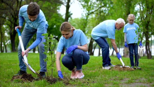 vídeos de stock, filmes e b-roll de voluntários plantando mudas de árvores em parque, conservação de recursos naturais, cuidados - voluntário