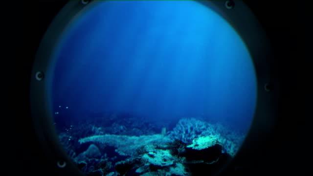 Voyage under the sea (no shark) video