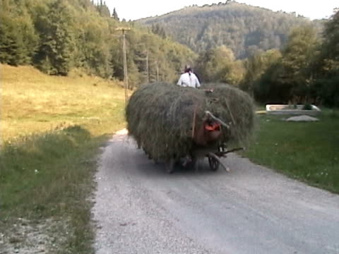 Wagon with hay video