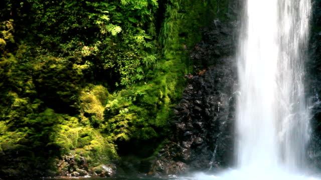 Wahkeena Falls Trail waterfall detail