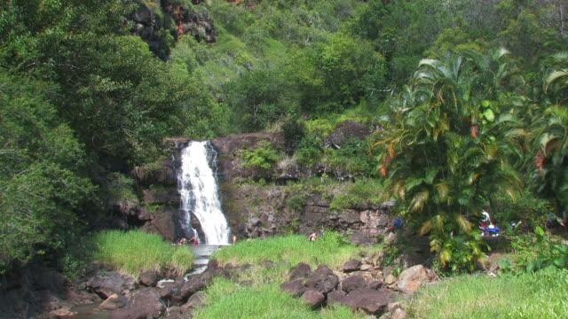 Waimea falls 2 - HD 30F  medium group of people stock videos & royalty-free footage