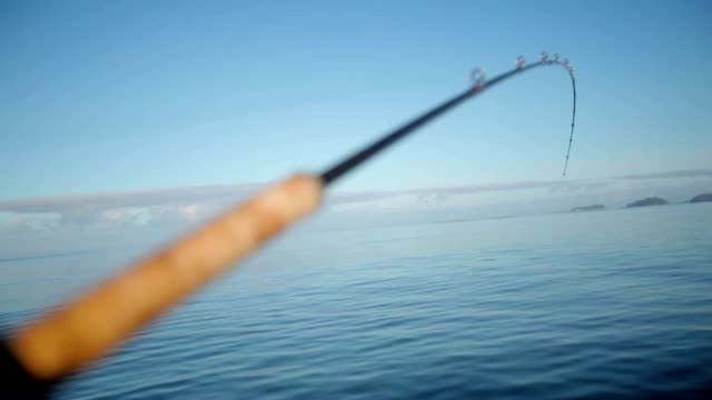 Waiting for bait. Shot of fishing pole Waiting for bait. Shot of fishing pole fishing rod stock videos & royalty-free footage