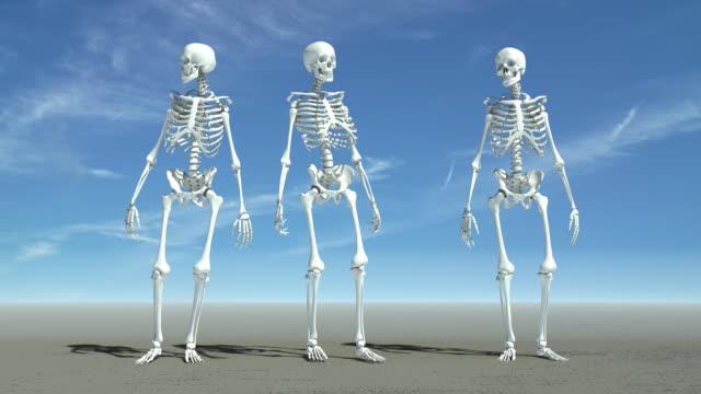 Waiting Skeletons video