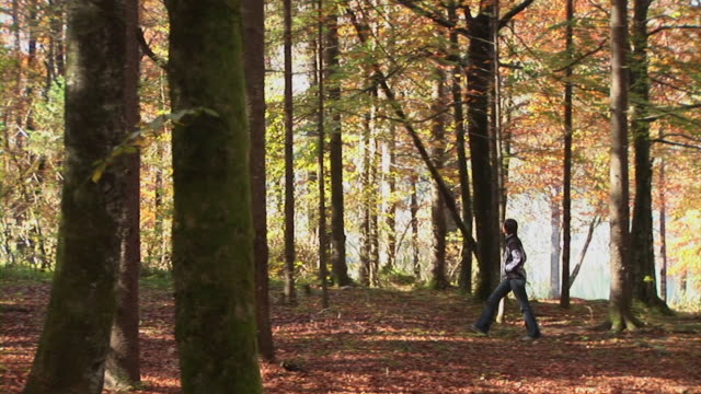 HD: A Walk In The Forest HD1080i: Woman is having a walk through the forest. Autumn. Slovenia. 笹 stock videos & royalty-free footage