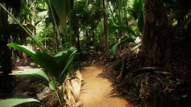 rejs - ekoturystyka filmów i materiałów b-roll