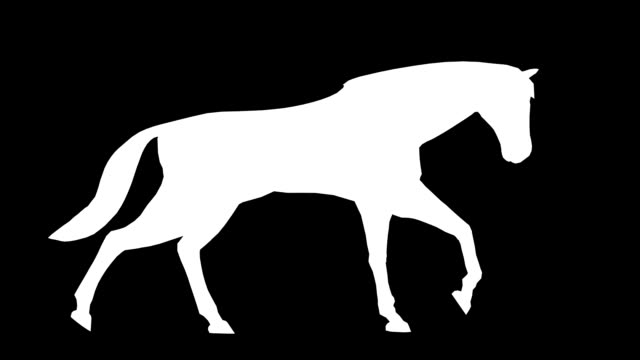Walking Horse (Loopable) video