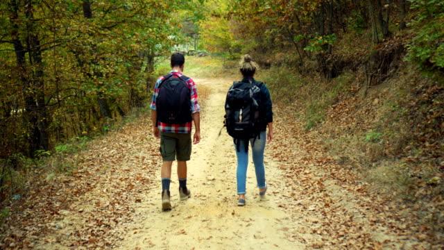 walking in the autumn forest - viaggio d'istruzione video stock e b–roll