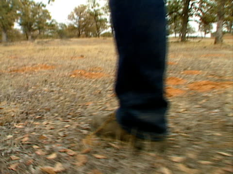 stockvideo's en b-roll-footage met walking in the woods - natuurgrond