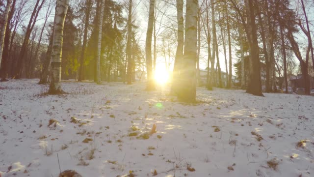 wandern im winter landschaft waldbäume mit sonnenuntergang sonne im hintergrund, pov - schneeflocke sonnenaufgang stock-videos und b-roll-filmmaterial