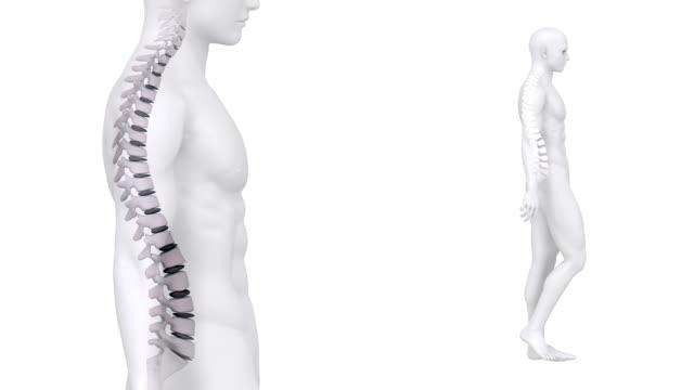 Walking man backbone zoom video