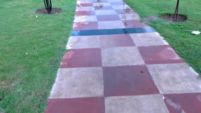 wandelen op landweg in het Park video