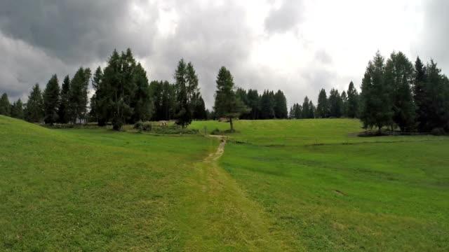 Walking on Dolomites (Seiser Alm - Italy) video