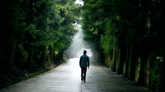 Walking on forest road in the morning,Breathe the fresh air