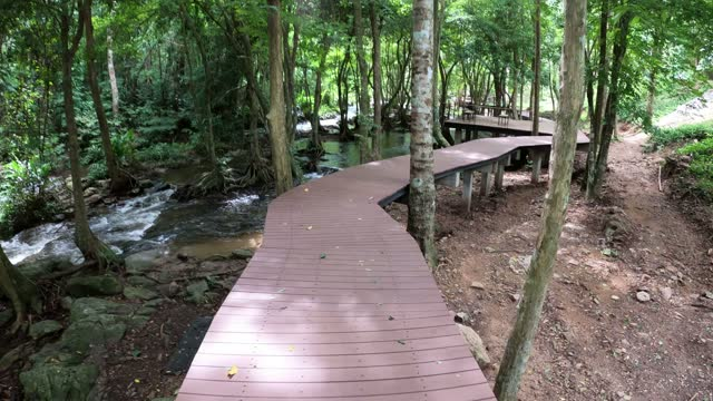 Walking on wooden bridge over a river in the forest