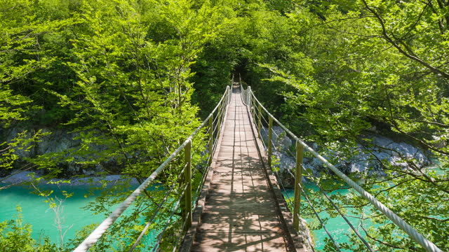 Walking over wooden bridge in lush green environment