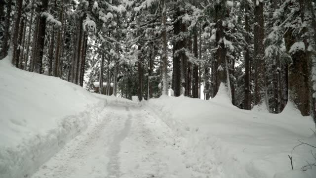 vidéos et rushes de marche la route nettoyée dans la journée il neige au village de shirakawago - vue en contre plongée