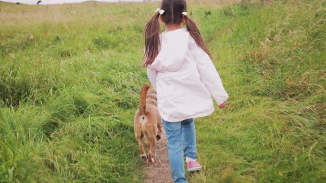 walking the dog - bambino cane video stock e b–roll
