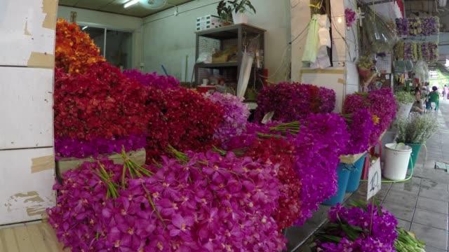 タイ、バンコクのフラワー マーケット通りを歩いてください。 - 花市場点の映像素材/bロール