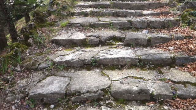 Walking up the stone stairs in a public city park