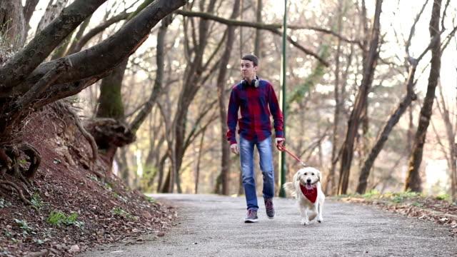 cammina con il cane nel parco - soltanto un animale video stock e b–roll