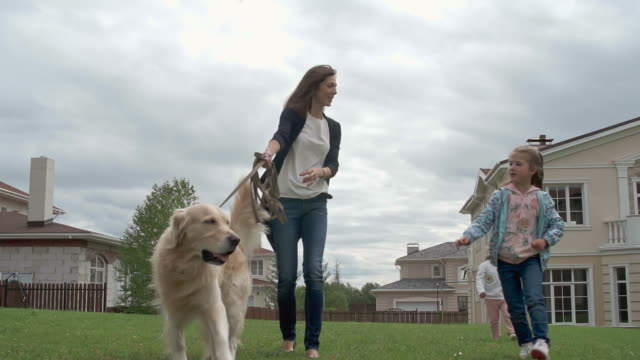 Walking with Family Pet video