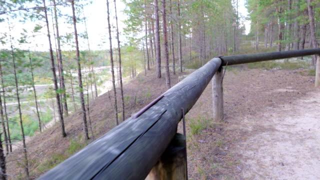 en gångväg av skogen i piusa naturreservat - fur bildbanksvideor och videomaterial från bakom kulisserna