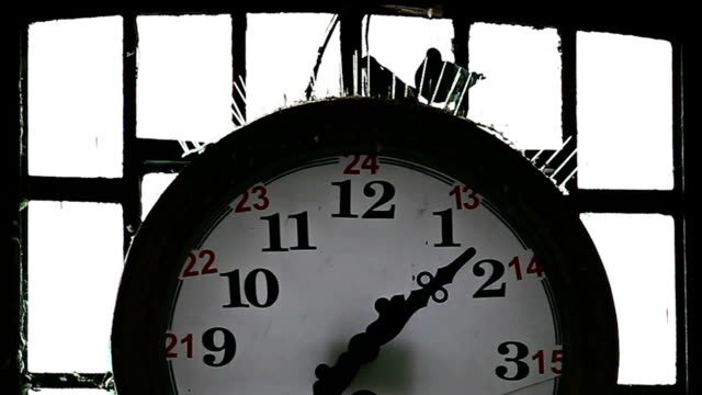 HD: Wall Clock and Pigeon home video
