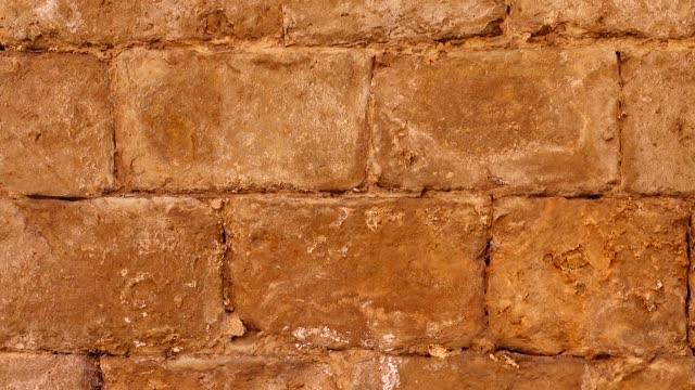 石の壁。撮影背景。 - 石垣点の映像素材/bロール