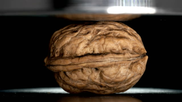 walnut pressed with hydraulic press, close-up - noci video stock e b–roll