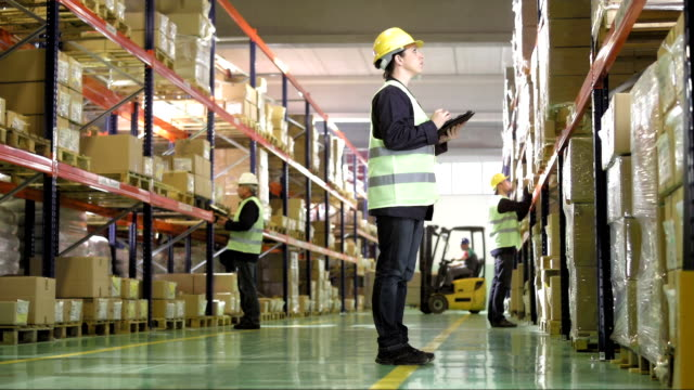 Warehouse Worker Using A Digital Tablet video