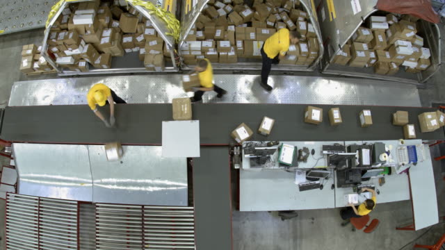 vídeos de stock e filmes b-roll de time-lapse warehouse workers distributing packages onto different lines on conveyor belt - packaging