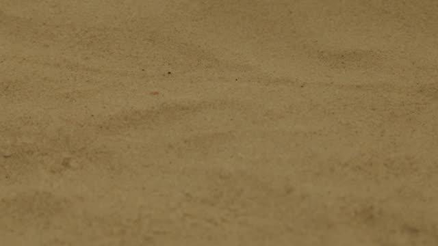 Warm sea sand on the beach Dry sea sand on the beach handful stock videos & royalty-free footage