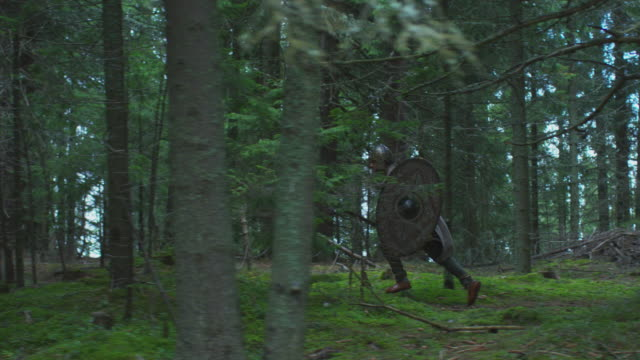 warrior running in the forest - family trees stock videos and b-roll footage