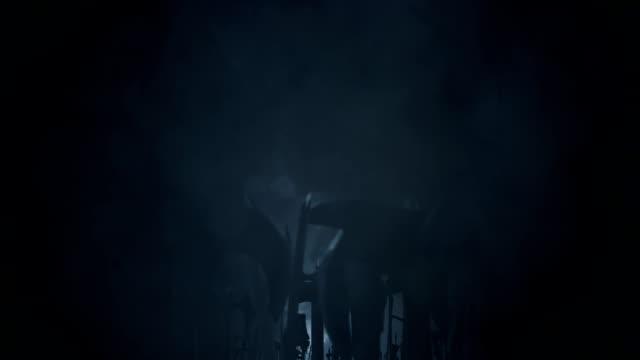 warriors waving their weapons under a lightning storm - sword стоковые видео и кадры b-roll