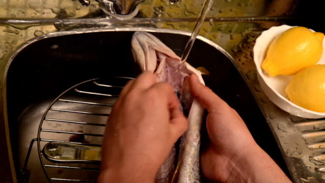 Washing and cleaning of fish. video